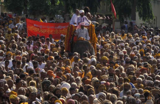 NAS procession éléphant Diap_